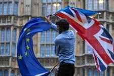 İngiliz halkı Avrupa Birliği'nden çıkmak istemiyor