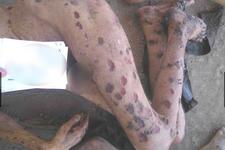 Suriye'den kan donduran yeni işkence görüntüleri