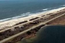 Long Island cinayetlerini bir seri katil gerçekleştirdi