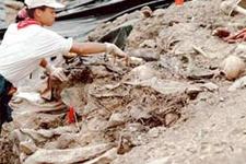 Srebrenica mağdurları şoke oldu
