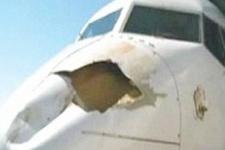 Göçmen kuşlar uçağı gagaladı!