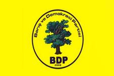 BDP il başkanı gözaltına alındı