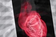 DİKKAT! Kalbi olan bunları izlemesin