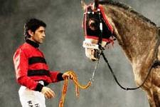 Atıyla gitse yarışa yetişecekti!