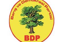 Bayrak krizine BDP'den açıklama!