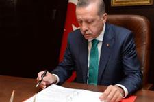 Erdoğan'ın masasındaki bedelli anketi