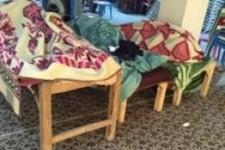 Cizre'deki HDP'li vekil: Bebeği kucağında anne vuruldu