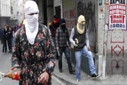 Gönderin bu itleri Afrin'e...