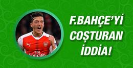 Mesut Özil Fenerbahçe için Türkiye'ye geldi