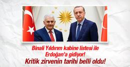 Binali Yıldırım yeni kabineyi Erdoğan'a sunuyor!