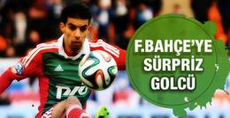 Fenerbahçe'ye sürpriz golcü: MBark Boussoufa!