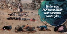 Teslim olan PKK'lılara 'swap testi' işte sonuç!