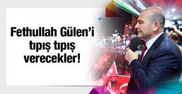 Süleyman Soylu: Gülen'i tıpış tıpış verecekler!