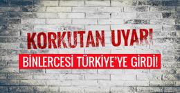 Türkiye'ye hayati uyarı! Çok sayıda DEAŞ'lı...