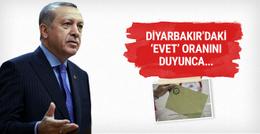 Erdoğan Diyarbakır'daki 'evet' oranını duyunca