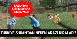 Türkiye neden Sudan'dan tarım arazileri kiraladı? Bakan cevapladı
