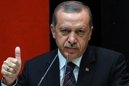 ABD'li bir emekli diplomattan Erdoğan itirafı