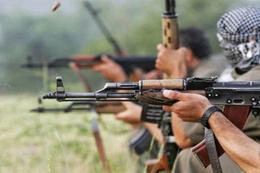 Tunceli'de operasyon! 8 PKK'lı öldürüldü!