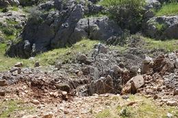 Kars'ta askerle PKK'lılar arasında silahlı çatışma