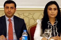Türkiye'yi BM'ye şikayet ettiler HDP'liler bakın ne yazdı!