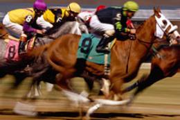Adana TJK at yarışı 29 Ağustos 2016 altılı ganyan bülteni
