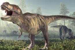 Dinozorları yok eden meğer göktaşı değilmiş