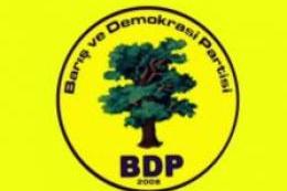 BDP'ye yeni eşbaşkan geliyor!