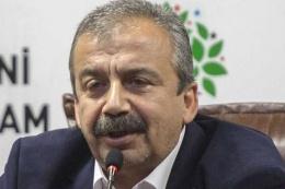 HDP'li Önder'den çözüm süreci iddiası Köşk engelledi!