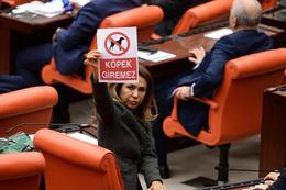 AK Partili vekillerden olay köpek dövizi!