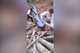 Odun taşımada son nokta!