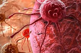Kanser ölümlerini ikinci nedeni