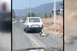 Otomobilin arkasında  sürüklenen köpek kurtarıldı