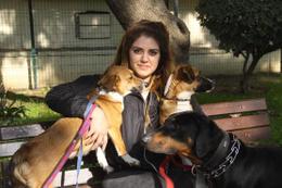 Kayıp köpeği için ilan verdi bulana bin lira verecek