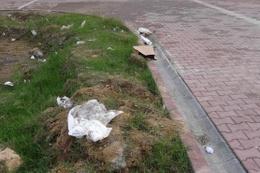 Toprağı kazarak oyun oynayan çocuklar ceset buldu