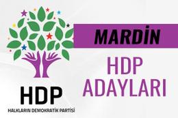 HDP Mardin milletvekili adayları 27. dönem listesi