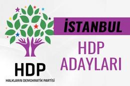 HDP İstanbul milletvekili adayları 27. dönem listesi