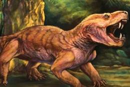 Permiyen dönemine ait 2 yırtıcı tür keşfedildi