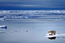 Buzul erimeleri alarm veriyor