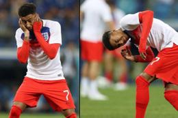 Dünya Kupası'nda sinek krizi!