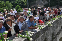 Bosna Savaşı'nda öldürülenler için Drina Nehri'ne 3 bin gül