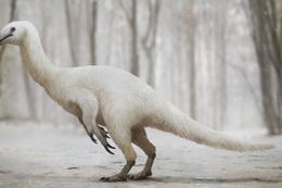 Dinozorların oto yolu: Alaska