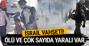 Mescid-i Aksa'da İsrail vahşeti! Köpeklerle saldırdılar
