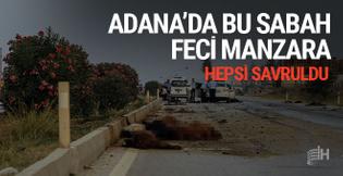 Adana'da bu sabah feci mazara