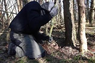 Bir sabah kalktı ormana gitti bir de yaptığına bakın
