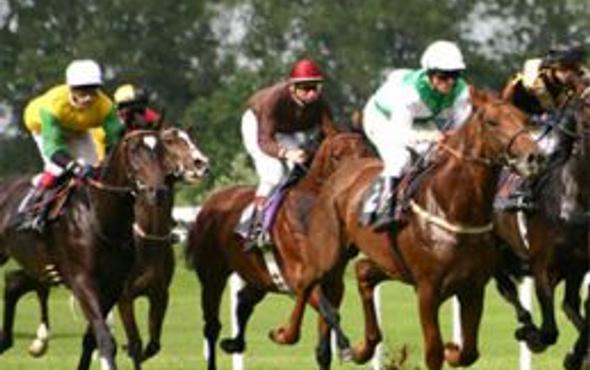 Adana TJK at yarışı 15 Ekim 2016 altılı ganyan bülteni