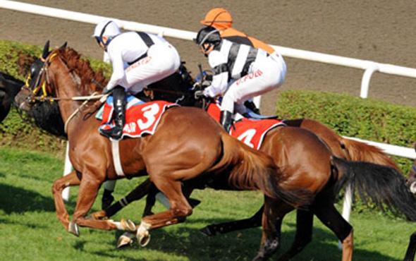 İzmir TJK at yarışı 21 Ekim 2016 altılı ganyan bülteni