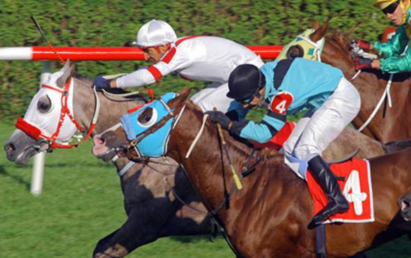Adana TJK at yarışı 5 Kasım 2016 altılı ganyan bülteni