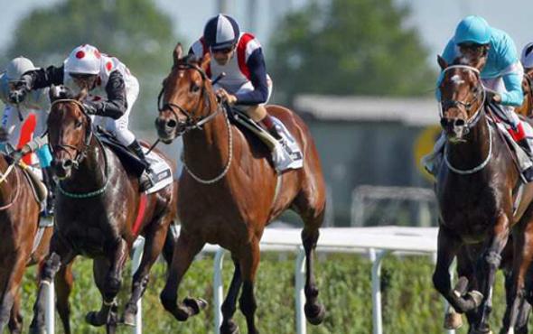 At yarışlarında rekor ikramiye