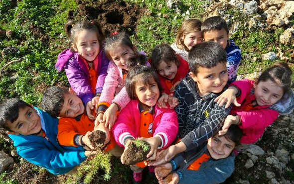 Türkiye'deki hatıra ormanı sayısına bakın