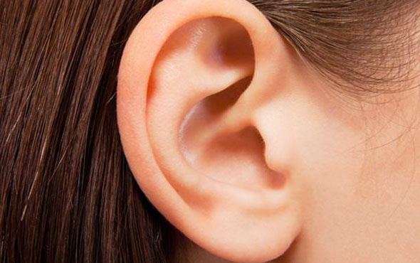 kulak ile ilgili görsel sonucu